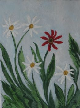 daisies with one red flower, 2014